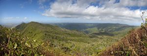 Black River Gorges Panorama III by carrotmadman6