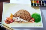 Watercolor Hedgehog by giulal