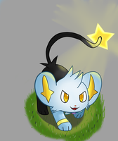 Jay the Shinx by Adam-Hu