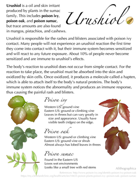 Science Fact Friday: Urushiol by Alithographica