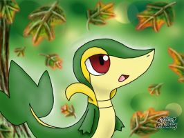 Snivy Fanart by 29steph5