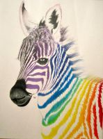 Rainbow Colored Pencil Zebra Baby by MyArtsDelight