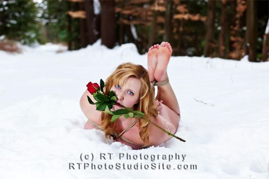 Shibari Snow Nude 2 - The Rose by BobRT