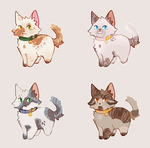 cat 200p flatsales || 2/4 open by AMARYLLIES