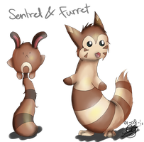 Furret and Sentret