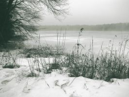 Frozen Foggy Lake by quidprosno