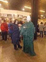 Snape and Voldemort by inedrox