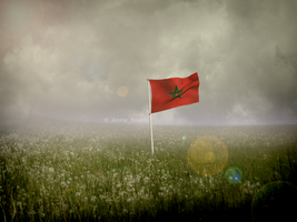 Morocco flag by Aminebjd