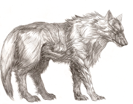 Lycan Queen, the Wolf by turpoidnox