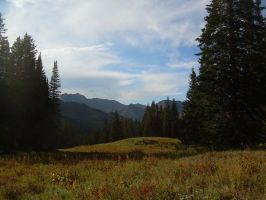 Mountain Meadow 2 by abuseofstock