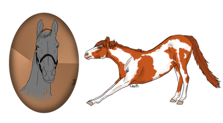 YHH - OPEN!! Headshot and fullbody- Closed by BlueLakeRanch