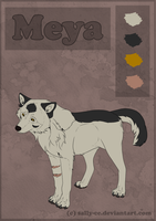 Meya - Character Sheet (ONWARD) by Sally-Ce