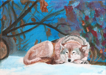 Dreaming in autumn snow by Domisea