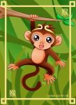 Year of the Monkey by Lily-Skadi