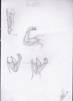 Arm practice by maxsilla