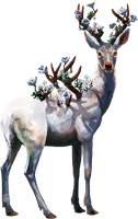 Floral stag by vasain