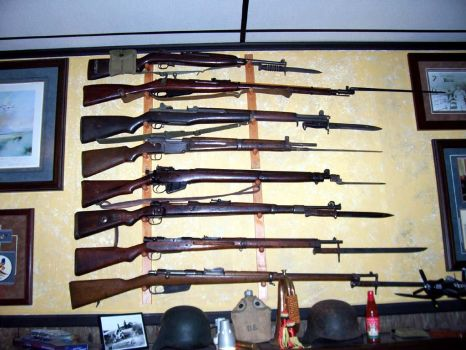 The rifles of WWII by JiangYingzi
