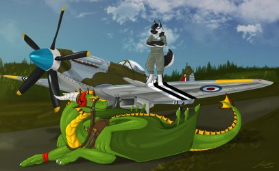 CM - Royal Air Force by Lowrider-Girl
