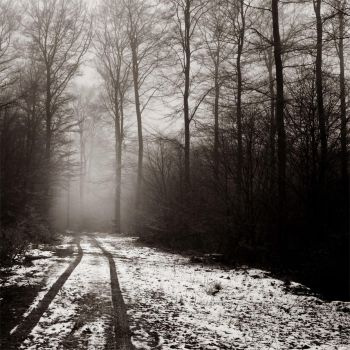 The Path Laid Out For Me by DpressedSoul