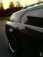 DODGE Magnum Side by wellgraphic