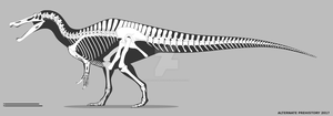 Baryonyx walkeri skeletal - old by AlternatePrehistory