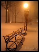 Benches Aglow with Snow by pluffypluffy