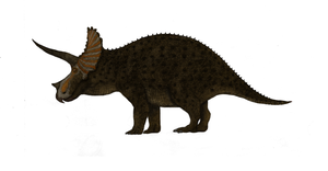Triceratops horridus by Dragonthunders