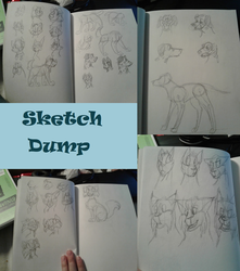 Sketch Dump Thingy by LillazKoiFish