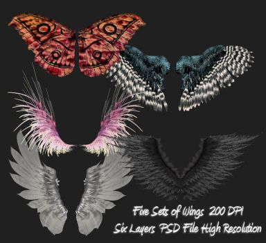 PSD Wings Package by briarmoon-stock