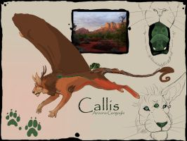 Callis by Anarchpeace