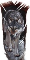 Wolf on Feather by lenzamoon