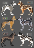(1/6 OPEN) Realisticish Wolf Adopts by artydoq