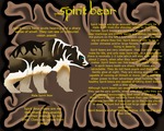 Spirit Bear Species Sheet by Winterwolf2