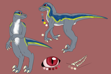 Cura the Raptor Reference (Comm.) by Albino-Umbreon