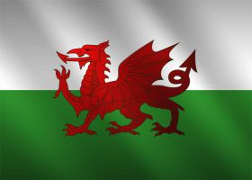 Welsh Flag Skin by TowiWakka