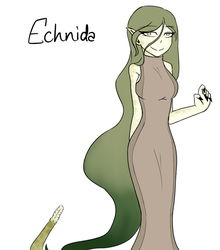Echnida by DaCrepeArts