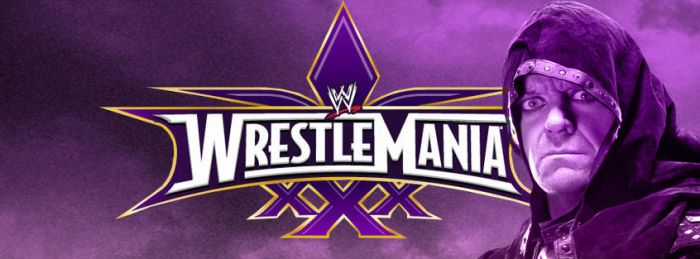 WrestleMania  30 by barrymk100