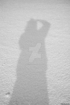 Snow Shadow by MrWitchblade