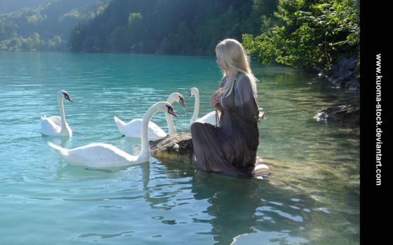Swan Lake 6 by Kuoma-stock