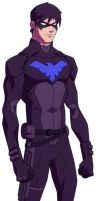 Young Justice Invasion Dick Grayson Nightwing by Matthew81