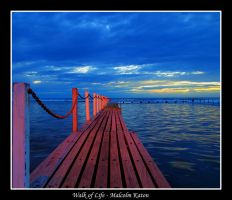 Walk of Life by FireflyPhotosAust
