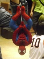 Spidey Upside Down by Neville6000