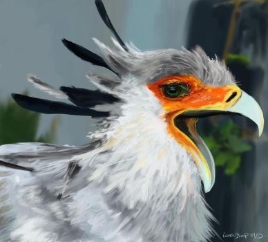 Secretary Bird by Acrylix91