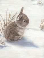 Snow Bunny by SavageArt