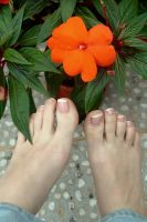 Toes and Flowers by Foxy-Feet