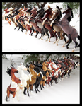 Breyer - Silver Conga by The-Toy-Chest