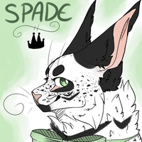 Spade by PlantSprout
