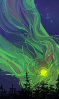 Northern Lights by stephanie-cost