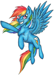 Rainbow Dash fullbody