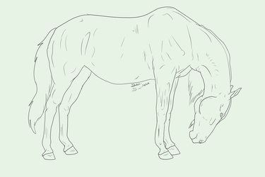 Horse Lineart Favourites By MEWprints On DeviantArt
